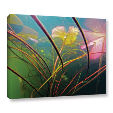Brushstone Lake Hope UW #2 Gallery Wrapped Canvas Wall Art