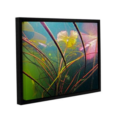 Brushstone Lake Hope UW #2 Gallery Wrapped Floater-Framed Canvas Wall Art