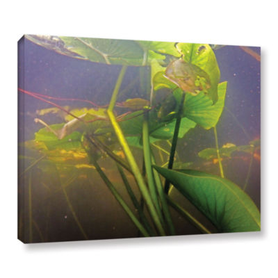 Brushstone Lake Hope UW #3 Gallery Wrapped CanvasWall Art