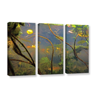 Brushstone Lake Hope UW #4 3-pc. Gallery Wrapped Canvas Wall Art
