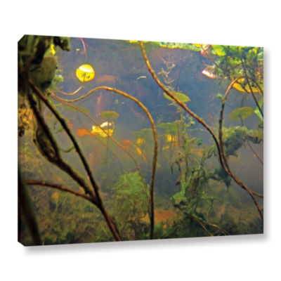 Brushstone Lake Hope UW #4 Gallery Wrapped CanvasWall Art