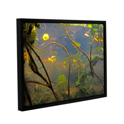 Brushstone Lake Hope UW #4 Gallery Wrapped Floater-Framed Canvas Wall Art
