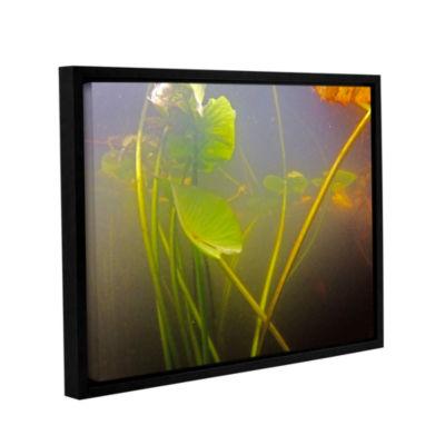 Brushstone Lake Hope UW #5 Gallery Wrapped Floater-Framed Canvas Wall Art