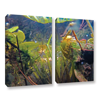 Brushstone Lake Hope UW #6 2-pc. Gallery Wrapped Canvas Wall Art