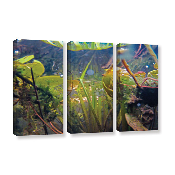 Brushstone Lake Hope UW #6 3-pc. Gallery Wrapped Canvas Wall Art