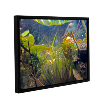 Brushstone Lake Hope UW #6 Gallery Wrapped Floater-Framed Canvas Wall Art