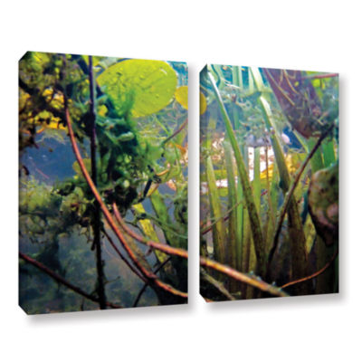 Brushstone Lake Hope UW #7 2-pc. Gallery Wrapped Canvas Wall Art