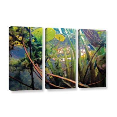 Brushstone Lake Hope UW #7 3-pc. Gallery Wrapped Canvas Wall Art
