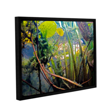 Brushstone Lake Hope UW #7 Gallery Wrapped Floater-Framed Canvas Wall Art