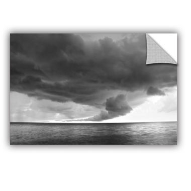 Brushstone Lake Erie Storm Removable Wall Decal