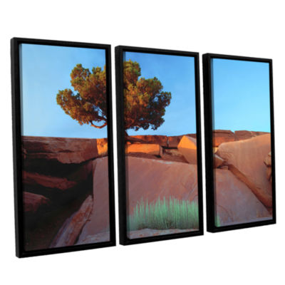 Brushstone Dead Horse Point 3-pc. Floater Framed Canvas Wall Art