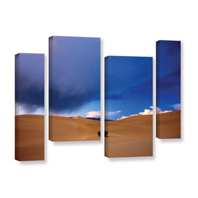 Brushstone Death Valley Winter 4-pc. Gallery Wrapped Staggered Canvas Wall Art