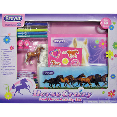 Breyer Stablemates Horse Crazy Real Horse ActivitySet