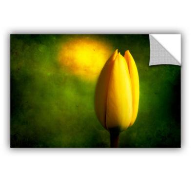 Brushstone The Tulip Hallucinations Canvas Art