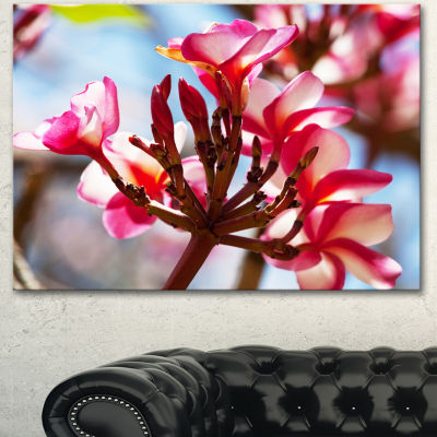 Designart Bunch Of Beautiful Tropical Flowers Floral Canvas Art Print