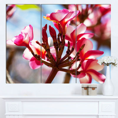 Designart Bunch Of Beautiful Tropical Flowers Floral Canvas Art Print - 3 Panels