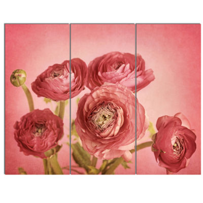 Designart Bunch Of Ranunculus Flowers On Pink Floral Canvas Art Print - 3 Panels