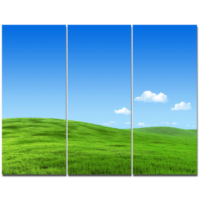 Designart Calm Green Meadow Landscape Canvas Art Print - 3 Panels