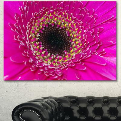 Designart Center Of Gerbera Flower Close Up Flowers Canvas Wall Artwork - 3 Panels