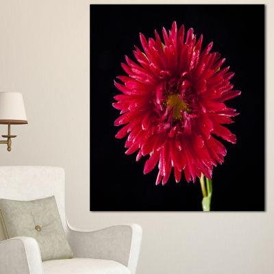 Design Art Chrysanthemum Flower On Black Flowers Canvas Wall Artwork
