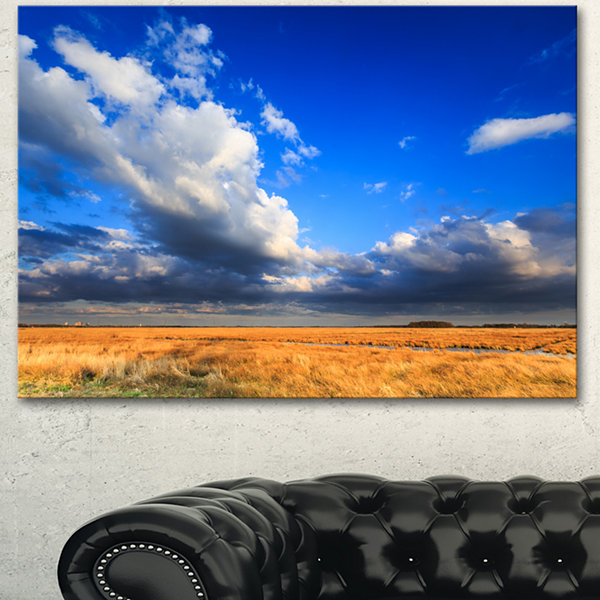 Designart Clouded Blue Sky Over Prairie LandscapeCanvas Art Print