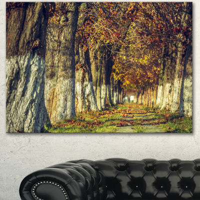 Designart Colorful And Serene Autumn Forest ModernForest Canvas Art