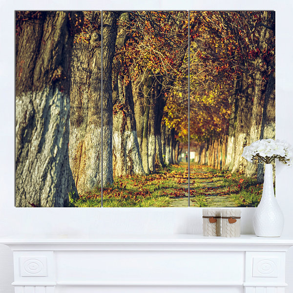 Designart Colorful And Serene Autumn Forest ModernForest Canvas Art - 3 Panels