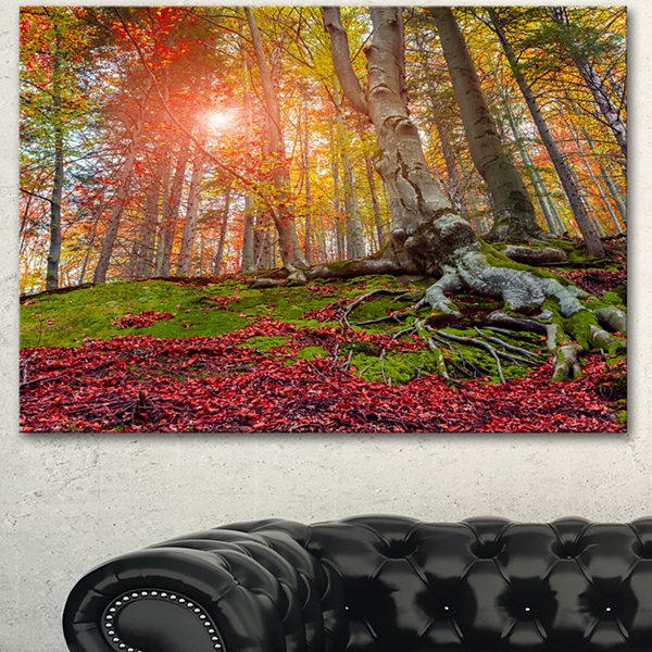 Designart Colorful Autumn Trees In Forest Large Landscape Canvas Art Print - 3 Panels