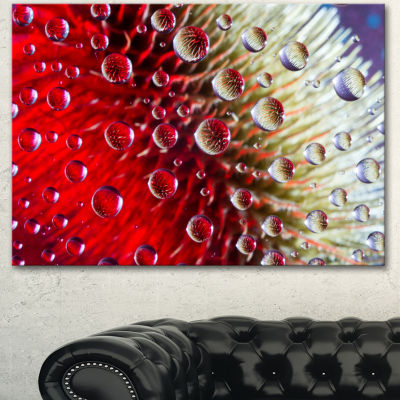Designart Colorful Red Flower In Raindrops Large Floral Canvas Artwork - 3 Panels