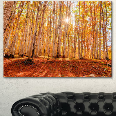 Designart Colorful Red Forest At Sunset Modern Forest Canvas Art