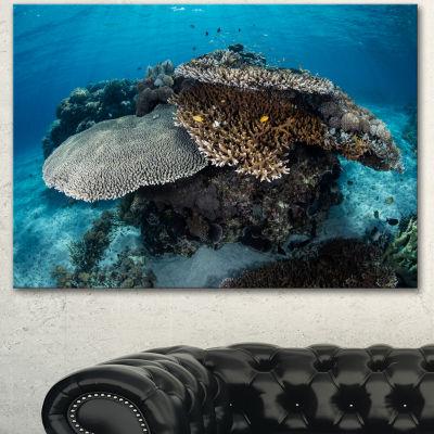 Designart Corals And Fish In Komodo National ParkSeashore Canvas Art Print - 3 Panels