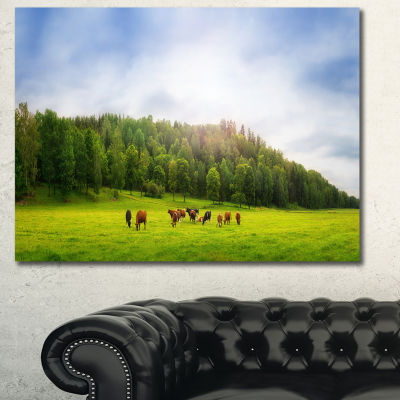 Designart Cows On Field Panorama Landscape CanvasArt Print