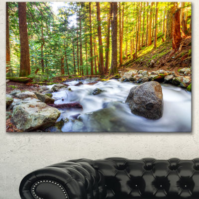 Designart Creek Flowing Through Forest LandscapeCanvas Art Print