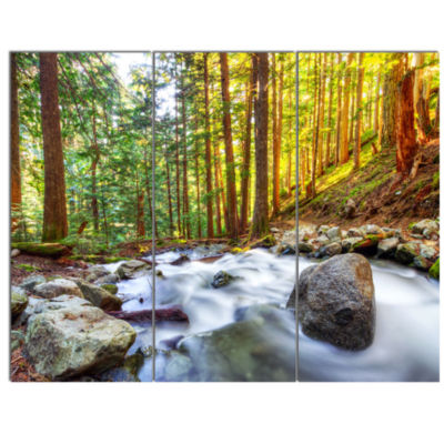 Designart Creek Flowing Through Forest Landscape Canvas Art Print - 3 Panels