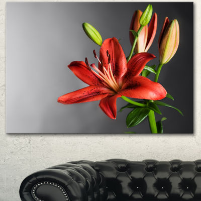 Designart Cute Red Lily Flower Over Black FlowersCanvas Wall Artwork