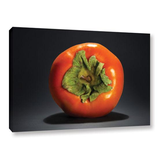 Brushstone Persimmon Gallery Wrapped Canvas Wall Art