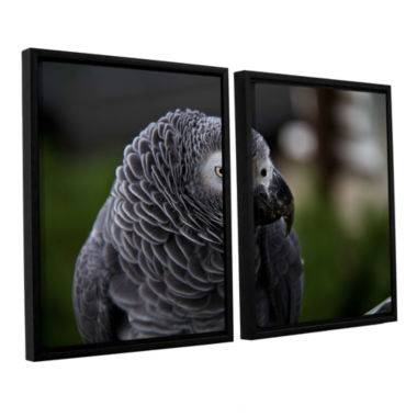 Brushstone Parrot 2-pc. Floater Framed Canvas WallArt