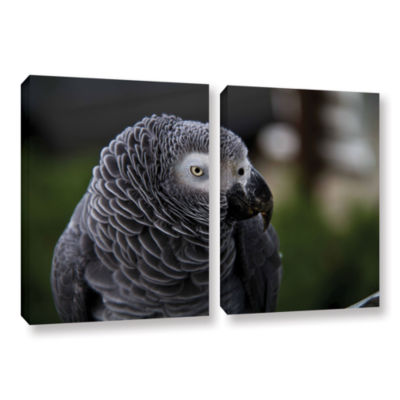 Brushstone Parrot 2-pc. Gallery Wrapped Canvas Wall Art