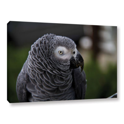 Brushstone Parrot Gallery Wrapped Canvas Wall Art