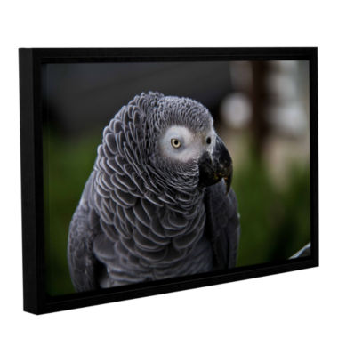 Brushstone Parrot Gallery Wrapped Floater-Framed Canvas Wall Art