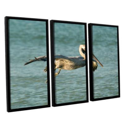 Brushstone Pelican11A 3-pc. Floater Framed CanvasWall Art