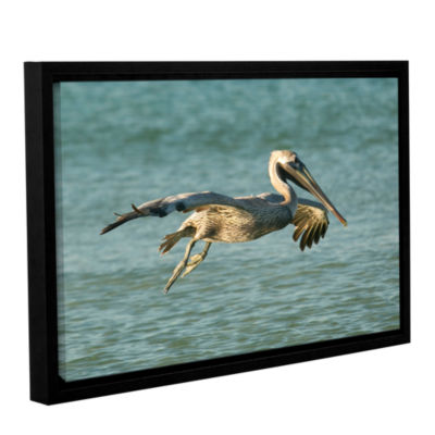Brushstone Pelican11A Gallery Wrapped Floater-Framed Canvas Wall Art