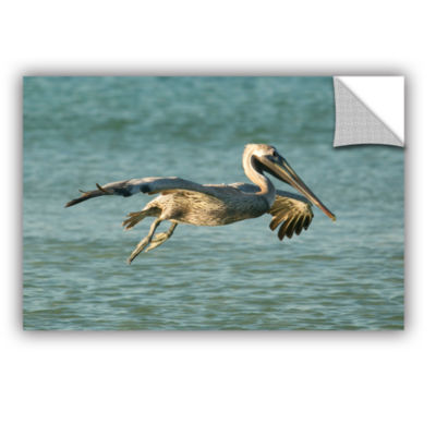 Brushstone Pelican11A Removable Wall Decal
