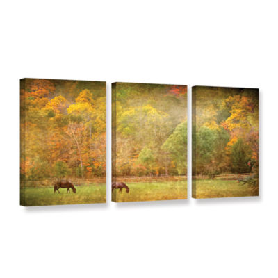 Brushstone Pasture 3-pc. Gallery Wrapped Canvas Wall Art