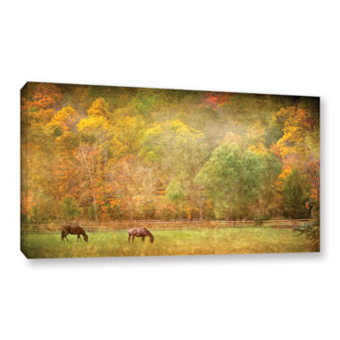 Brushstone Pasture Gallery Wrapped Canvas Wall Art