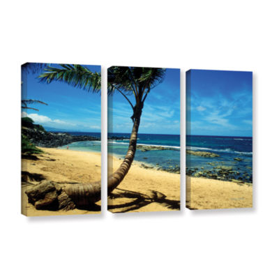 Brushstone Palm Tree In Paradise (Beach Front) 3-pc. Gallery Wrapped Canvas Wall Art