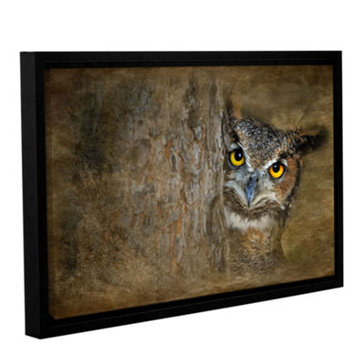 Brushstone Peeping Owl Gallery Wrapped Floater-Framed Canvas Wall Art