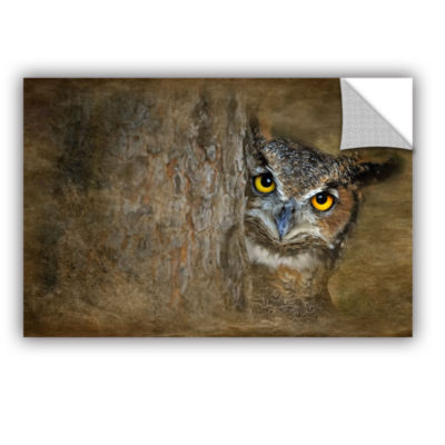 Brushstone Peeping Owl Removable Wall Decal