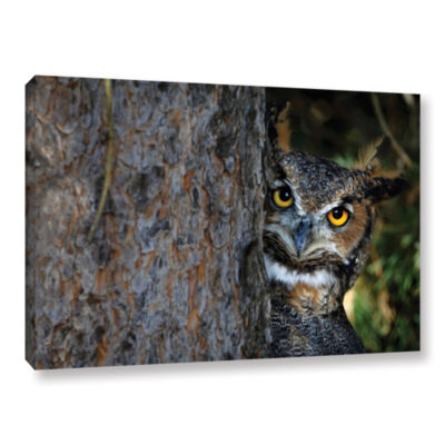 Brushstone Peering Gallery Wrapped Canvas Wall Art