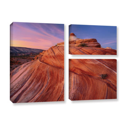 Brushstone Paria Wilderness 3-pc. Flag Gallery Wrapped Canvas Wall Art